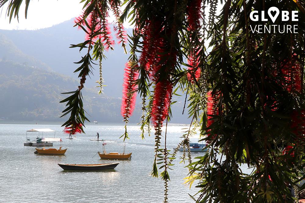 Pokhara Phewa Lake Nepal